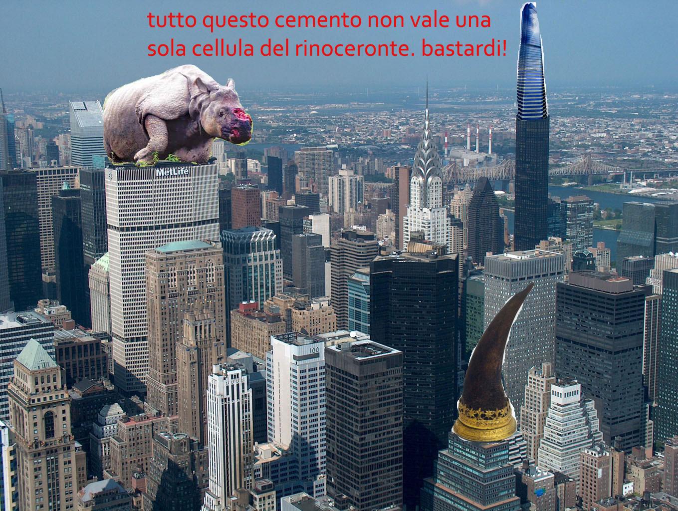 new-york ceronte.jpg