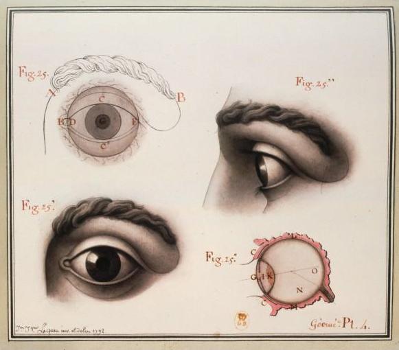 occhio1.jpg