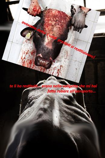 tommaso_ausili_slaughterhouse12.jpg
